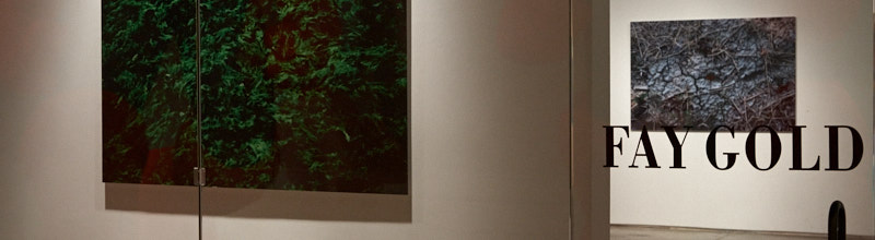 Particolare della Fay Gold Gallery (durante la mostra Mazzanti)
