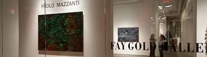 Fay Gold Gallery durante la mostra di paolo Mazzanti (particolare)